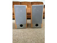 Sony SS-NX1 Speaker System - EXCELLENT condition.