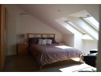 Double Room available for 2 weeks in Sept (7-23)