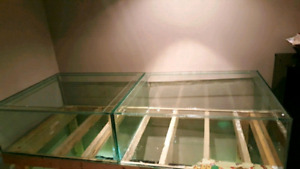 Lots of aquarium needs to go make resonable offer!!i am moving!!