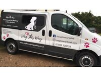 Dog Walker & Home Boarder - 10% off your first walk! Fully Certificated and insured