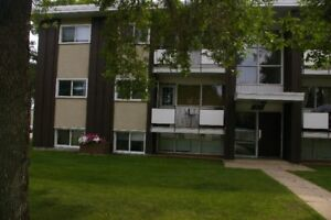 Why pay realtor fees? Amazing condo close to the U of A