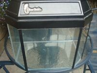 small clearseal hex aquarum bargain £15