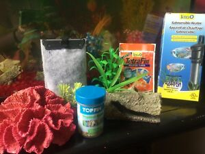 10 gallon fish tank starter kit