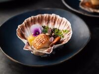 Chefs needed at Black Roe, Mayfair! Commis / Chef de Partie / Paid apprenticeship available