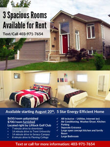 3 Spacious Rooms for Rent - Furnished or Unfurnished