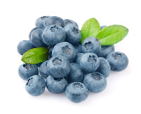 Blueberry Pickers Wanted - Clingan Organic Blueberry Farm