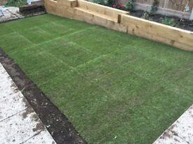 Rolawn Turf / Lawn - Premier Turf Grass - Very High Quality