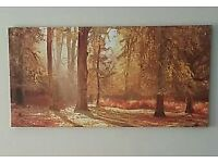Canvas print/Painting of Autumn Woods