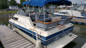 1987 Campion 250 OffShore+docked