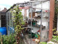 Greenhouse - Lean to - Aluminium and glass 10ft x 6ft