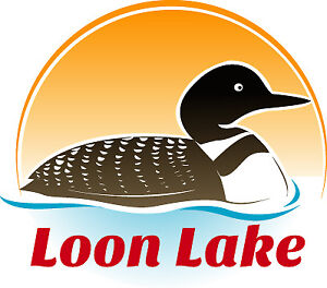 LOON LAKE- 3 CAMPS-> ONE PRICE->OPEN HOUSE- 2 to 4PM SUN