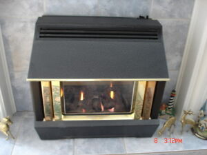 fireplace insert or Hearth