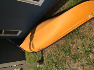 Canoe and 2 paddles