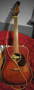 Electric acoustic guitar & amp w/ travel case