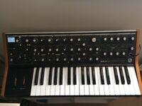 Moog sub37 Bob Moog Tribute Paraphonic Synthesizer