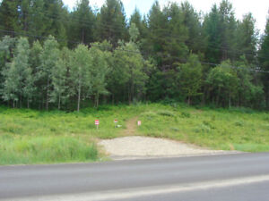 Undeveloped 1 Acre Treed Lot in Meadowbrook, BC