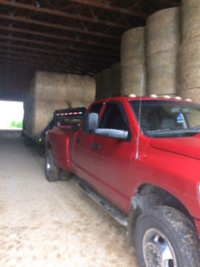1st cut good dry hay ( net wrapped )