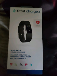Small fitbit charge 2   black