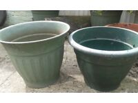 large plastic plant containers