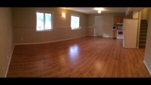 BRIGHT, CLEAN and LARGE ONE BEDROOM SHAWNESSY $1100