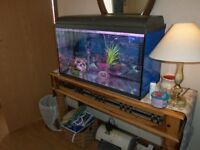 aquariam/100ltr/complete/with all accessories/