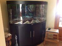 Jewel Trigon 350lt fish tank for sale
