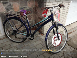 Schwinn HYBRID womans bike
