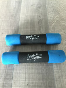 Energetics Duo Exercise Wheel & dumbells