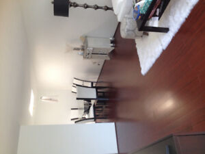 One bedroom furnished Apartment everything included