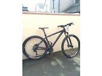 "Cube Mountain Bike 19"" frame"