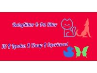 South London Pet and Baby Sitter