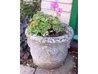 Stone/Concrete Tub-shaped Planters (2)