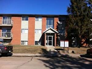 Two bedroom on the TOP FLOOR for only 1000.00! Leduc
