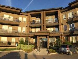 Gorgeous 2 Bedroom 2 Bath Top Floor Condo