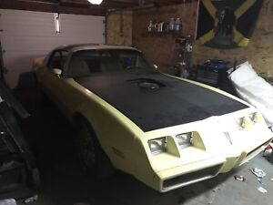 1980 firebird yellowbird edition PROJECT