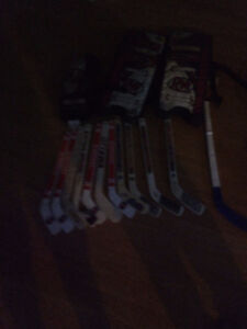 11 mini sticks road hockey pads and a cacher for road hockey