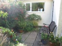 Lovely light quiet house available for one week from 2nd September