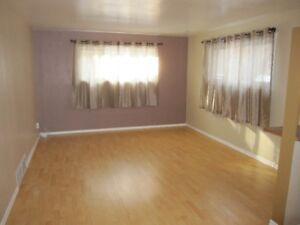 basement suite