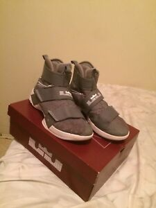 LeBron Soldier 10 (Grey and White)