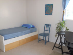 ROOM AVAILABLE IN UNIVERSITY AREA: few minutes walk to HUB