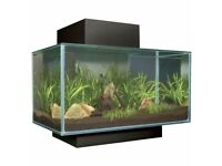 Fluval black gloss 23l with filter and heater