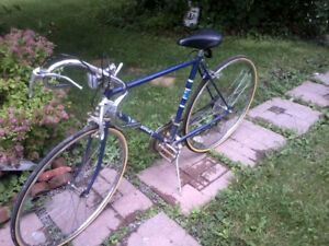 Older Supercycle 10-Speed Roadbike