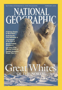 Several National Geographic magazine issues