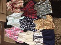 Large girls 9-12&12-18 month bundle