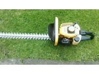 Petrol hedge trimmers 22cc