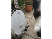 Fender FB-55 5 string Banjo - Reduced Price