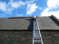 Reputable Roofer in the GTA