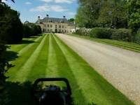Gardener and landscper avaliable with very reasonable prices