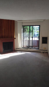 For Rent Large Apartment  Condo in Lakeview