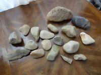 FREE Fish Tank Stones